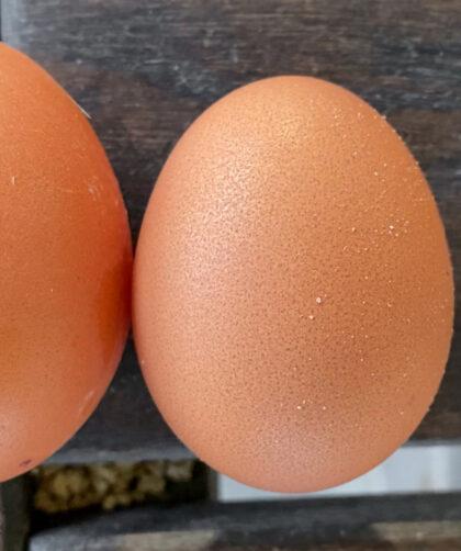 """fairy egg"" or small egg, next to a regular chicken egg"