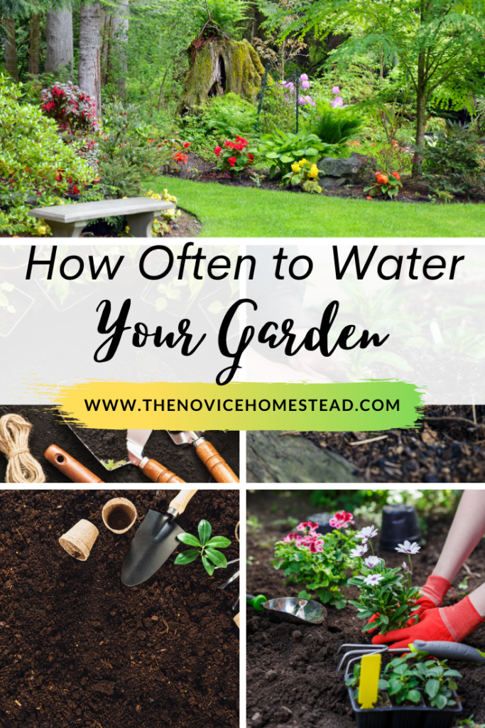 """collage of gardening photos; text overlay """"How Often to Water Your Garden"""""""