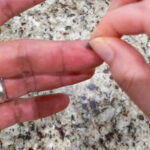 using spider web to stop bleeding on finger