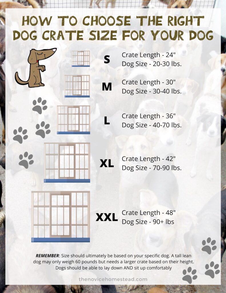 infographic explaining different sizes of dog crates