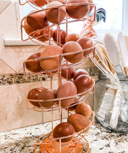 fresh eggs in a spiral egg rack on counter