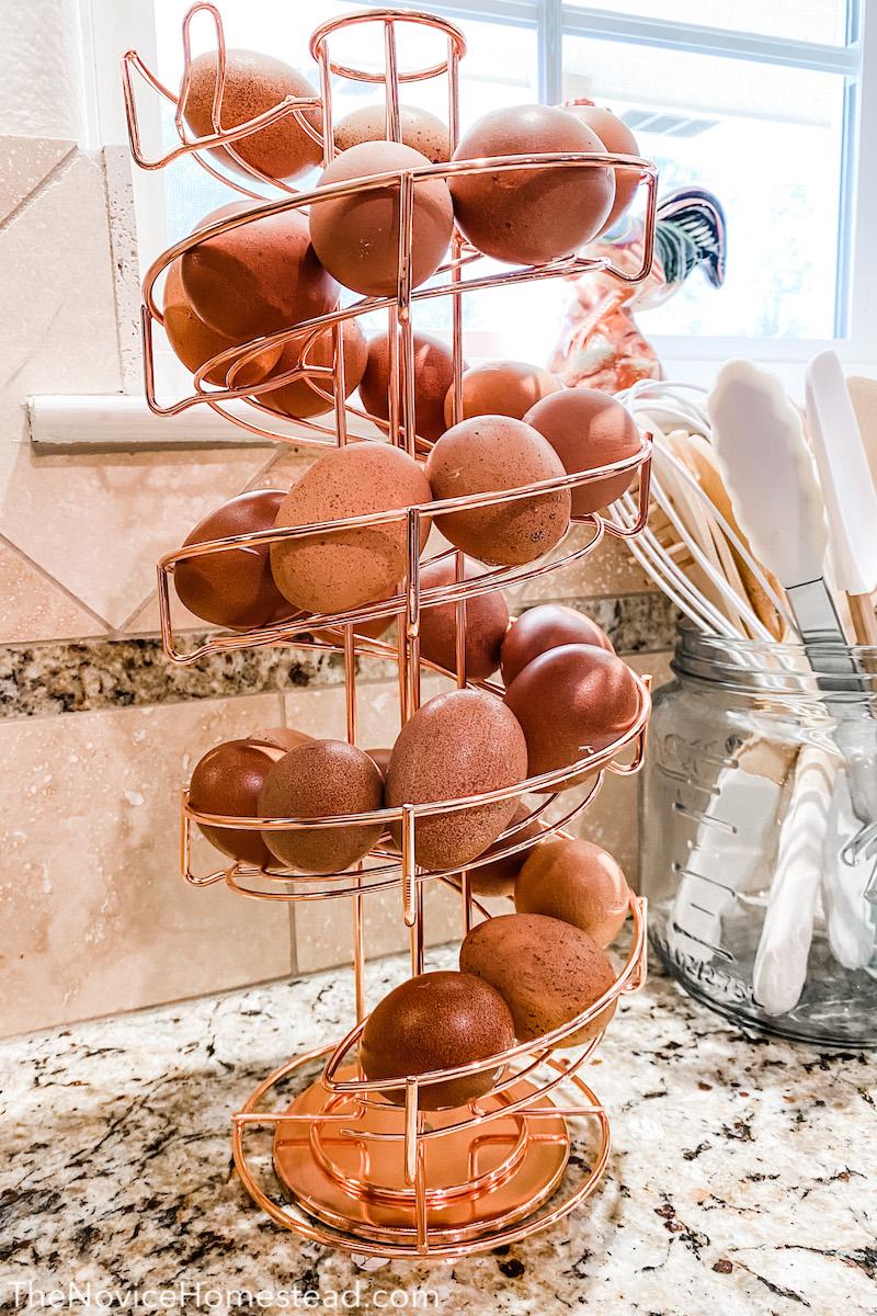 spiral egg skeltor with farm fresh eggs