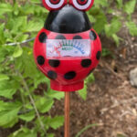 soil moisture meter to tell when to water the garden