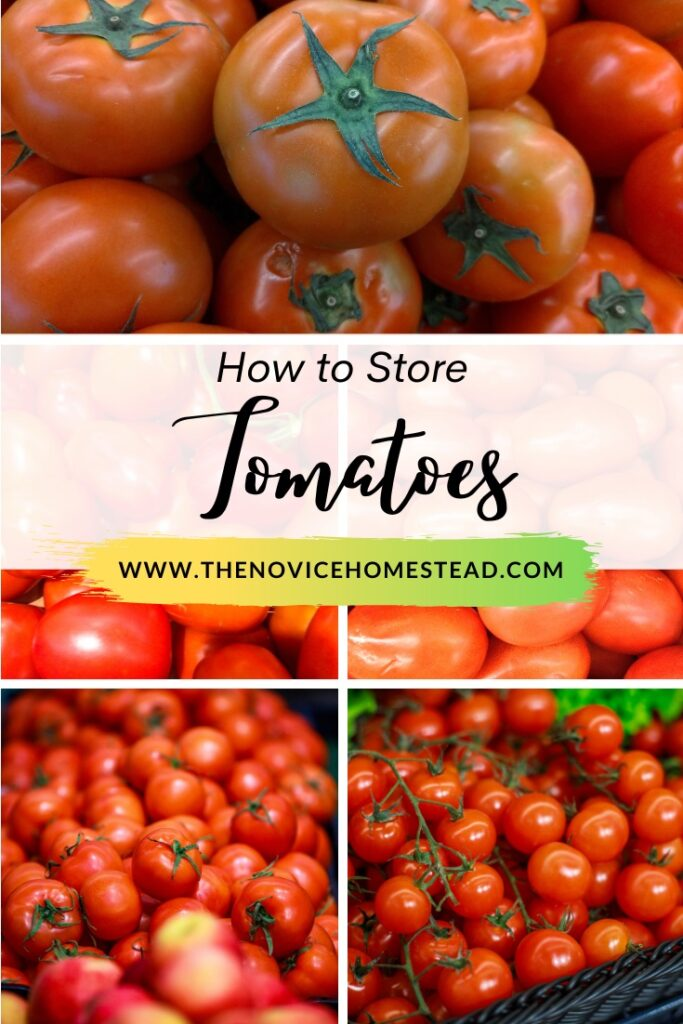 """collage image of fresh tomatoes; text overlay """"How to Store Tomatoes"""""""